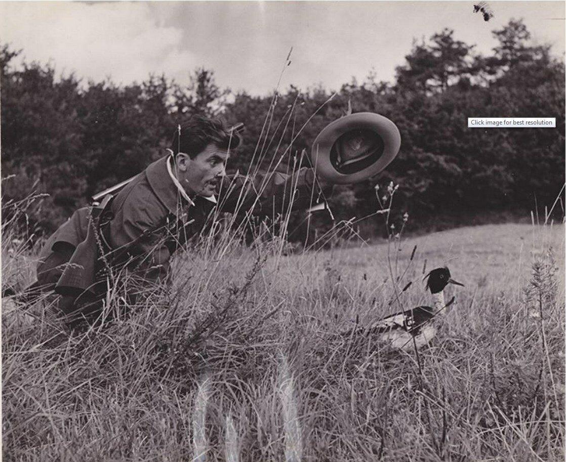1960-е. Сцена охоты
