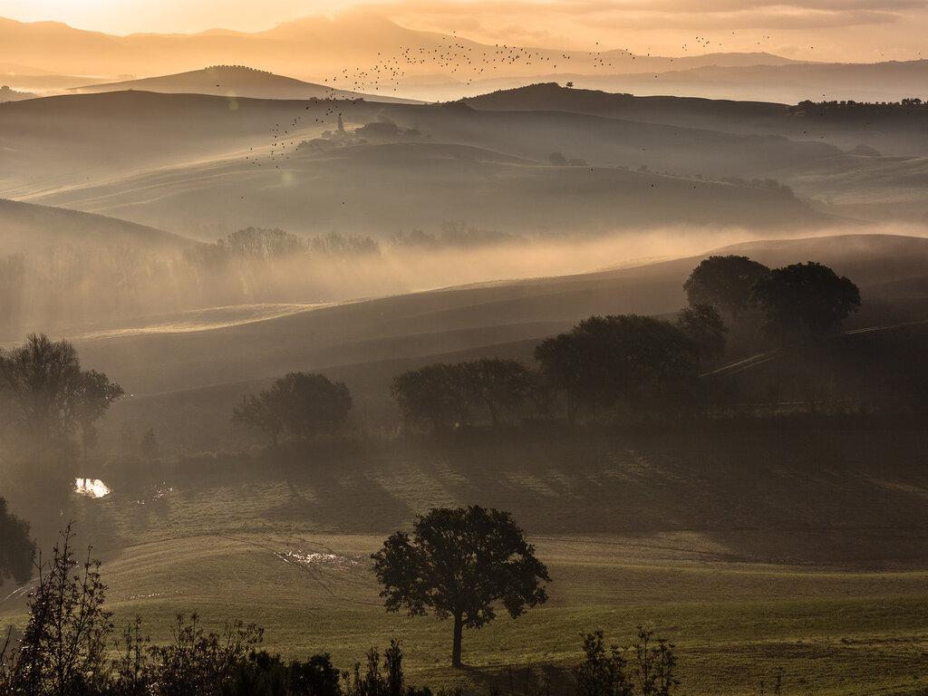 tuscany-0234.jpg