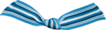 KAagard_GradeSchool_ribbon9.png