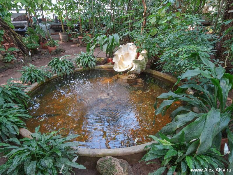 Бассейн с фонтаном и огромной раковиной.