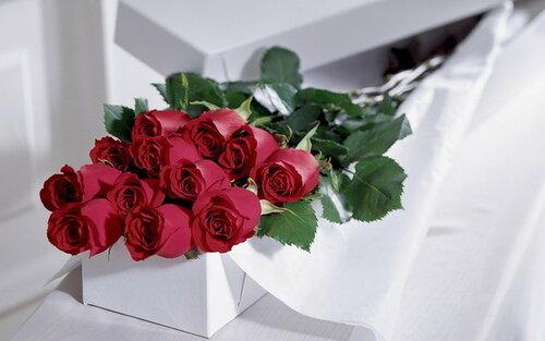 http://img-fotki.yandex.ru/get/9091/41473513.2598/0_14468b_b57a5261_L.jpg