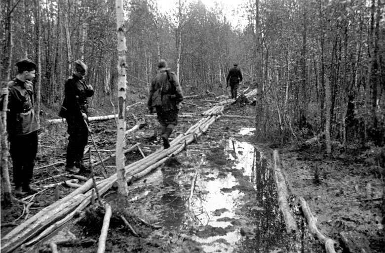 фотографы волховский фронт фото многие считали