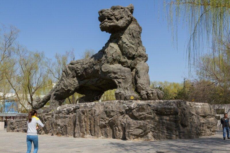 Каменный тигр, Пекинский зоопарк