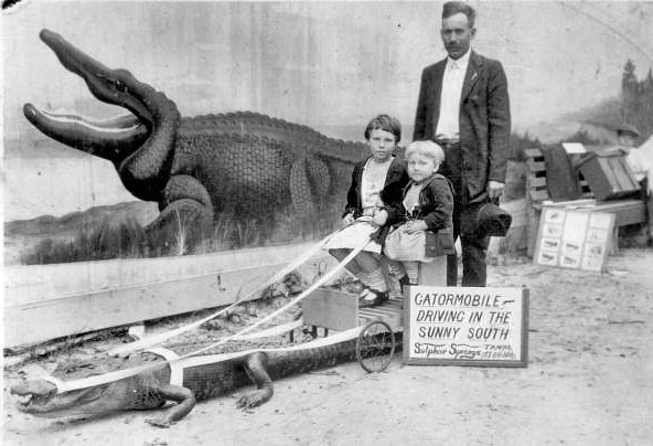 _Gatormobile_in_Sulfur_Springs_Tampa_Florida_in_1924.jpg