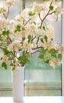 Цветы яблони (ручная работа из полимерной глины)