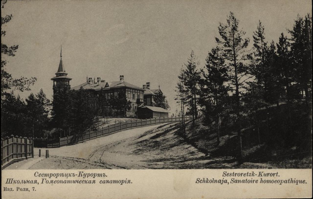 Платформа Школьная, Гомеопатическая санатория