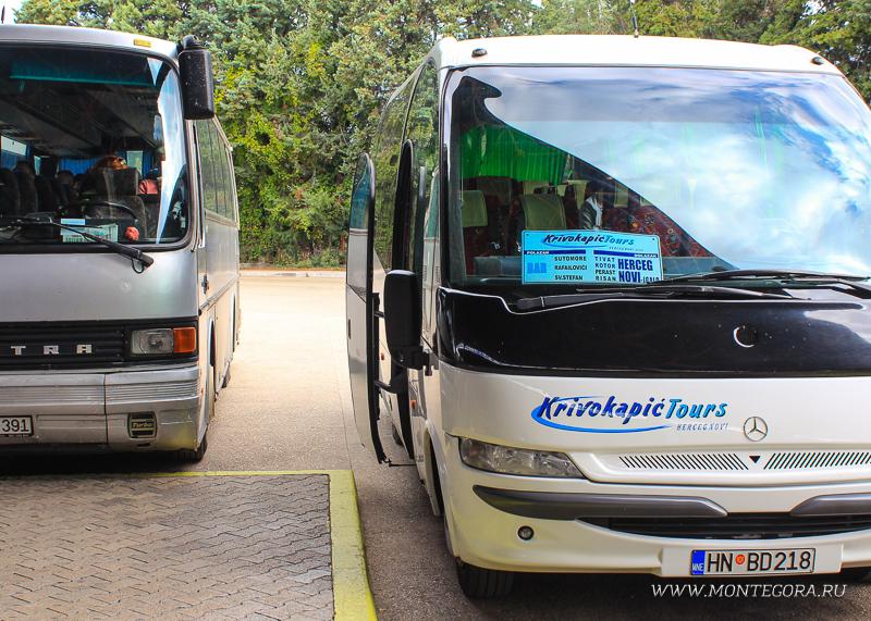 Автобусное сообщение в Черногории развито не так плохо, как говорят