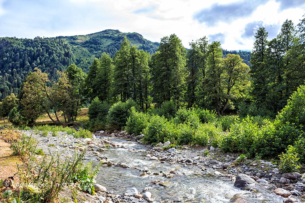 горная река с видом на горы в Рицинском национальном парке