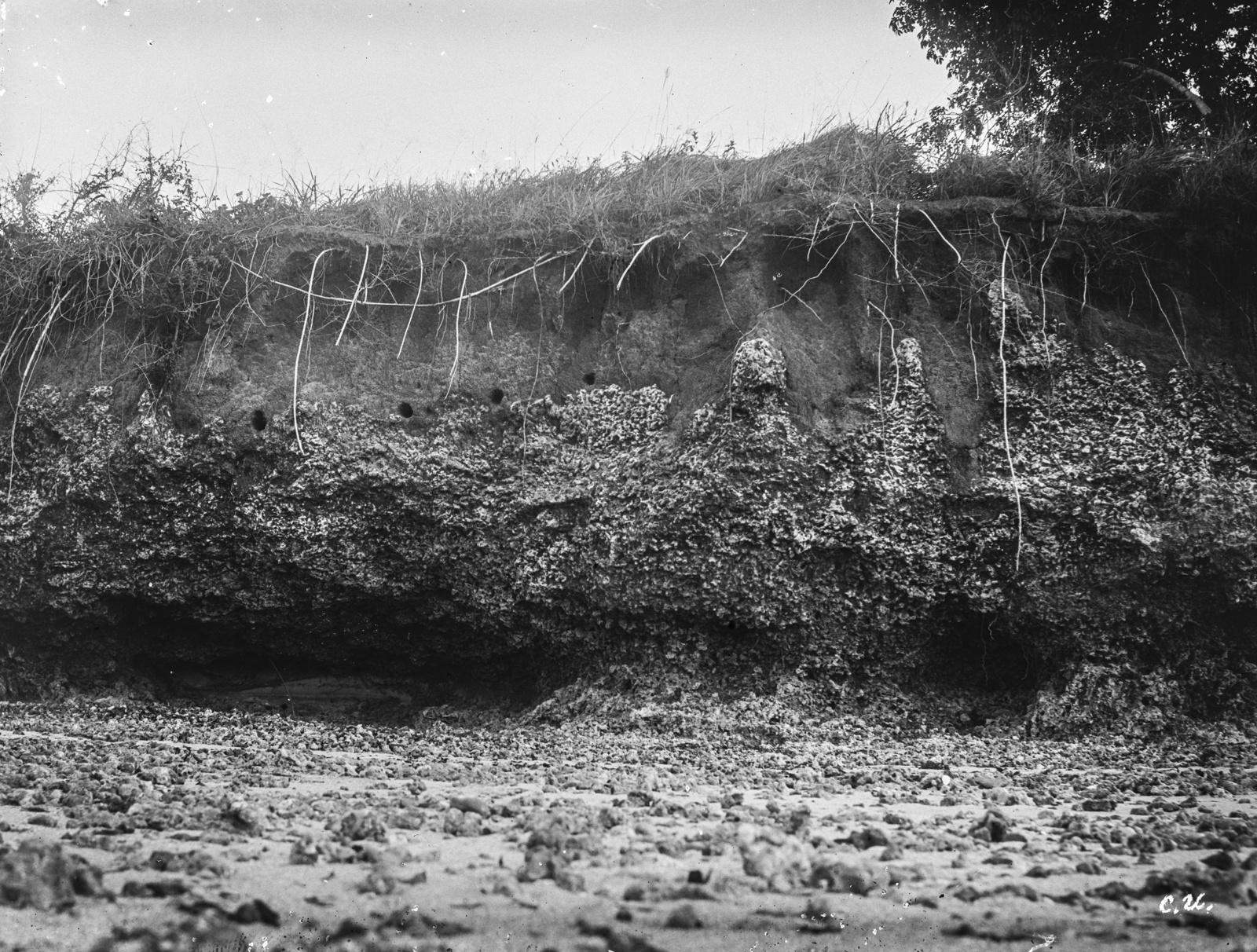 139. Остатки рифа на пляже острова Макатумбе