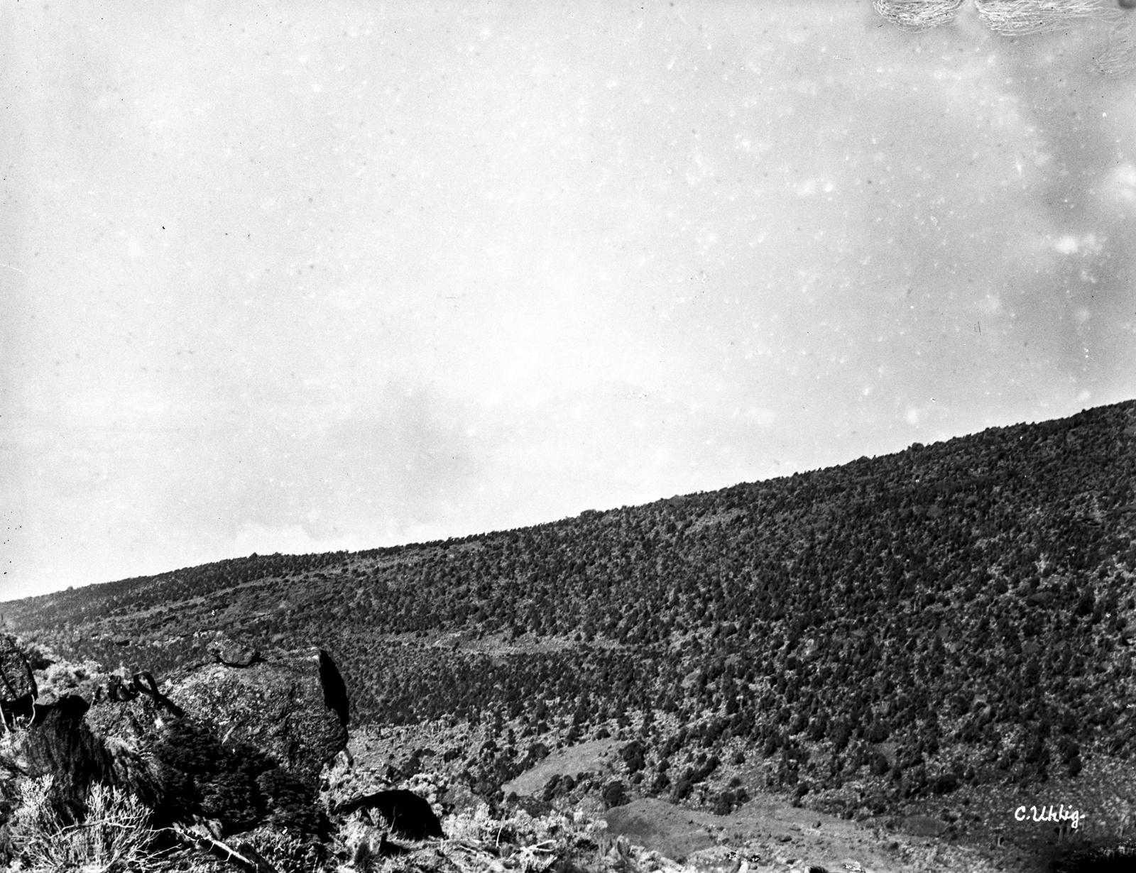 153. Вид ландшафта на высоте около 3200 м.
