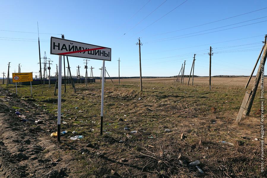 деревня Наймушины Кировская область
