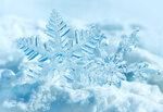 Winter (3).jpg