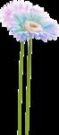 MRD_EggStraSE_blue flower.png