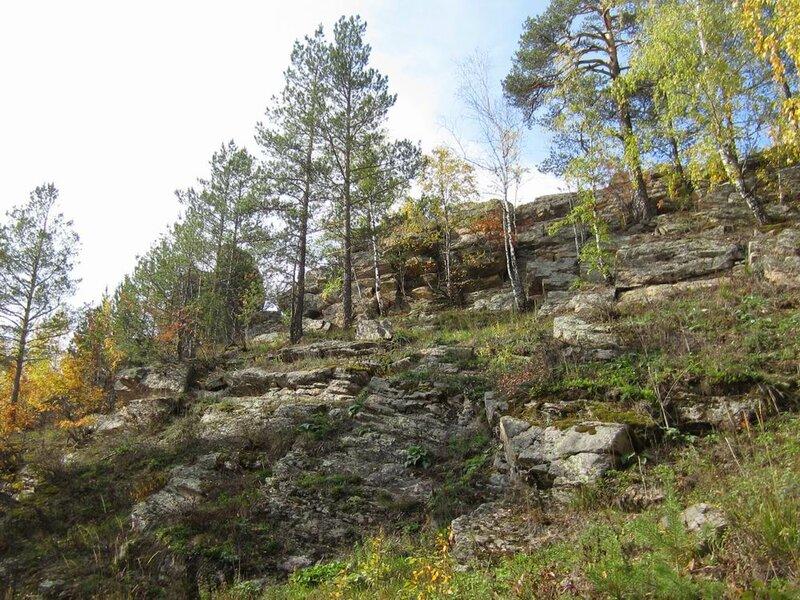 Деревья растут прямо сквозь скалы (11.11.2013)