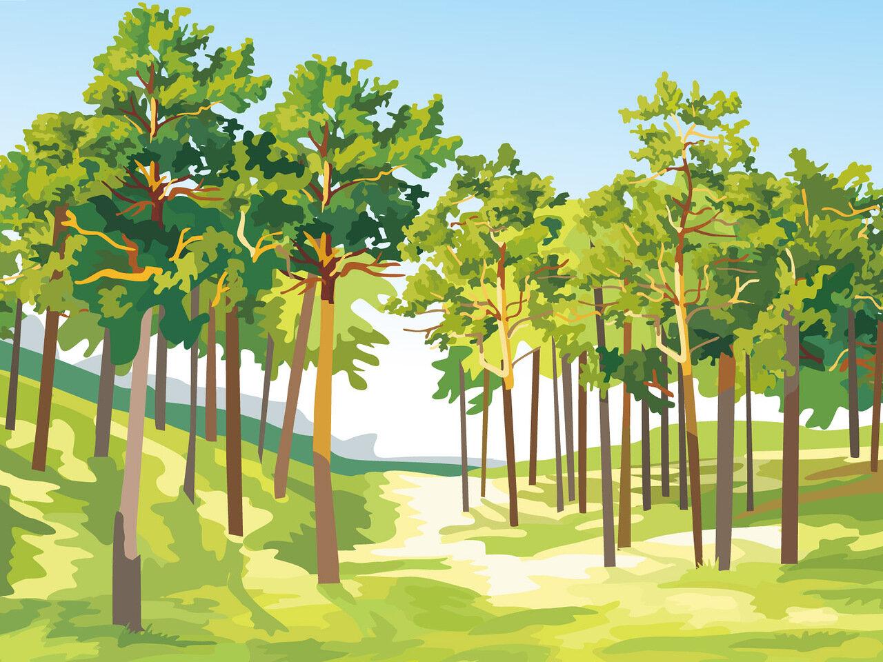 Картинки о лесе для детей нарисованные, пятерок для