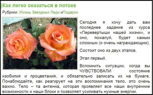 эзотерические тренинги Любовь Латыповой