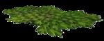 chouk77_element10.png