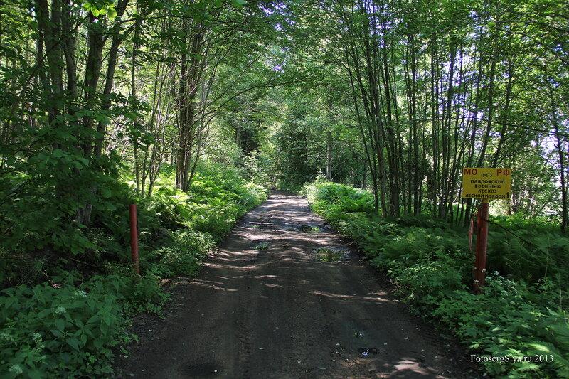 Лесной кордон
