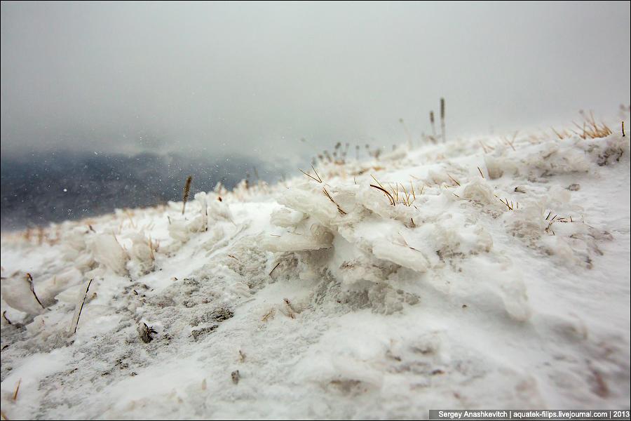 Зимние травы Чатыр-Дага