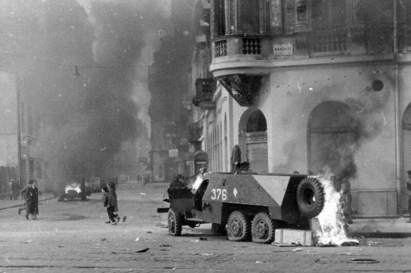 the october war of 1956 essay