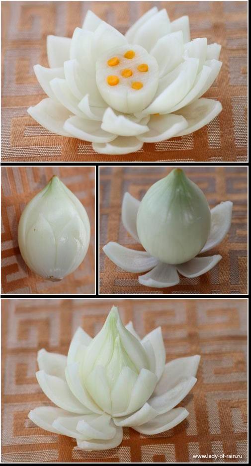 цветок лотос из лука