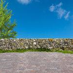 Holliewood_Topiary_Paper3.jpg