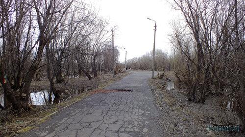 Фотография Инты №6645   16.05.2014_15:56