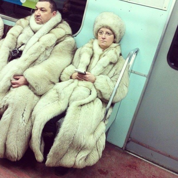 14. В Москве было ограблено одно из столичных шубохранилищ.