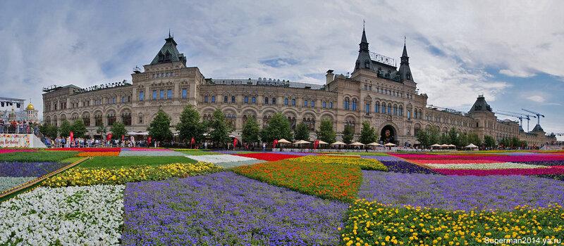 Цветочный ковёр на Красной площади