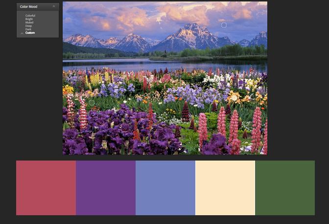 Цветотип лето, цветотип лето палитра, цветотип лето подходящие цвета