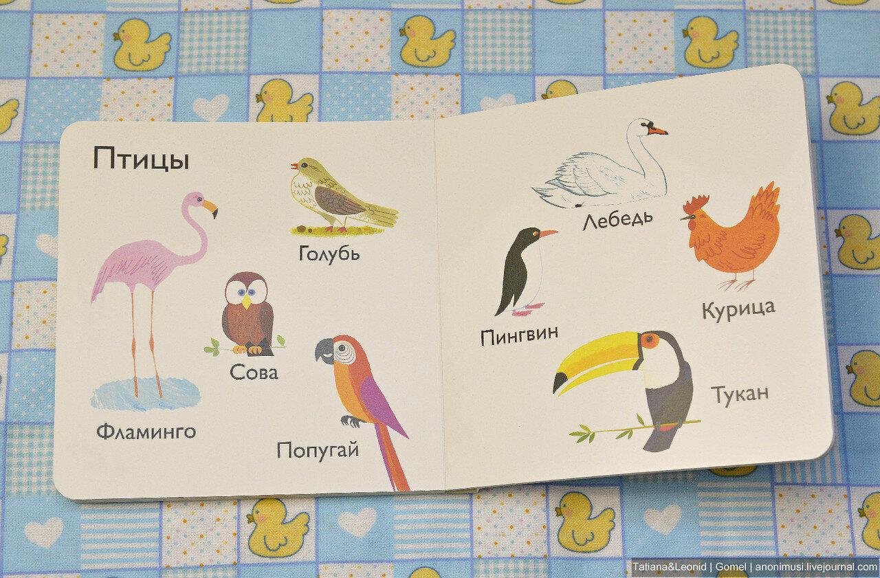 Обзор детских книг