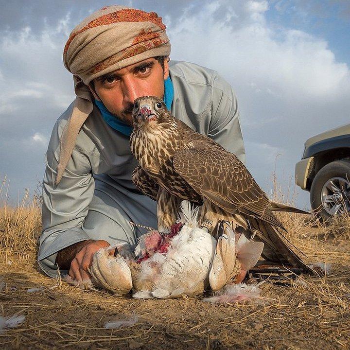 Dubai арабские эмираты Дубай Мохаммед ибн Рашид наследник дубаи ОАЭ Принц Хамдан Хамдан