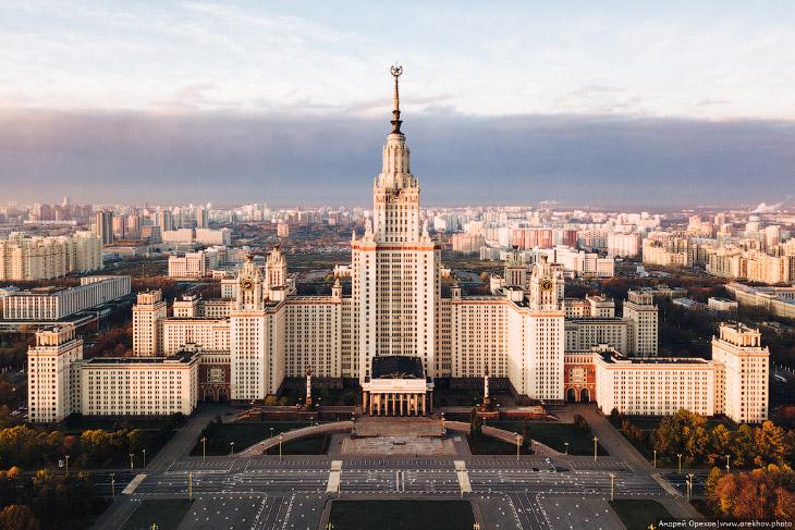 МГУ Москва птицы гиганты птица Гигант утро странное