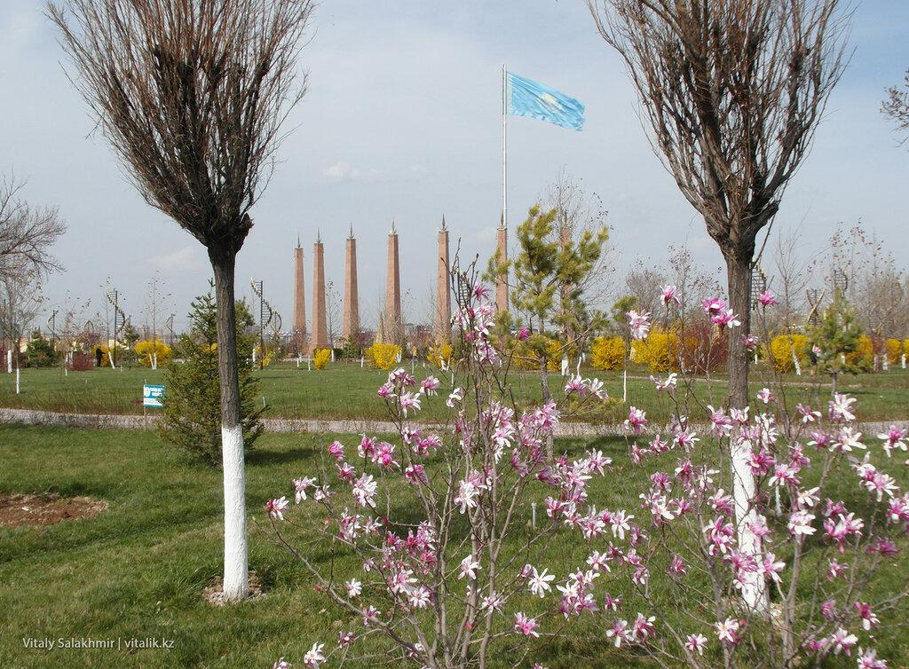Цветы в Парке Независимости, Шымкент