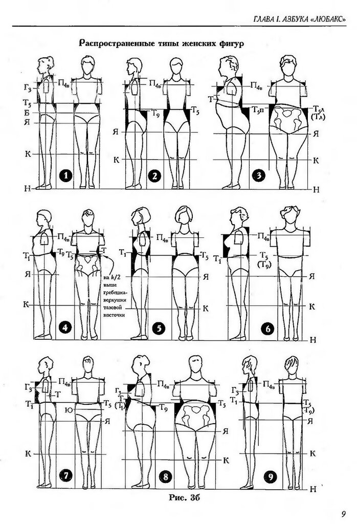Типы женской груди картинки 3 фотография