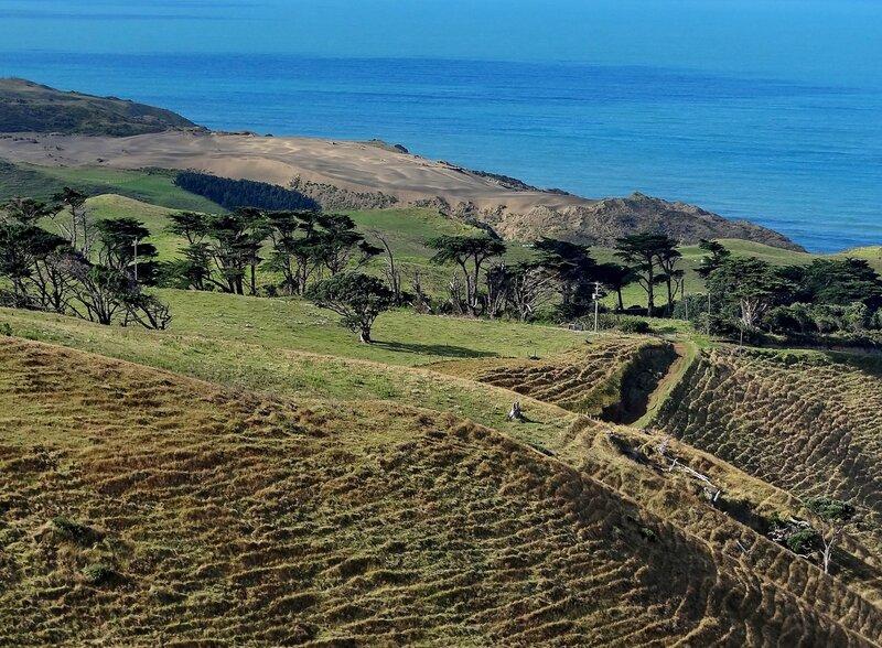Западные берега Новой Зеландии