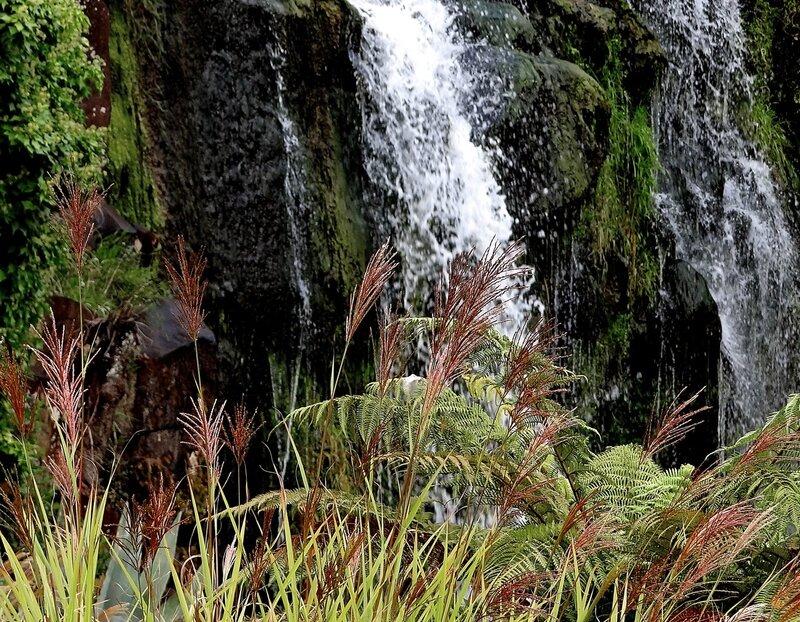 Трава у водопада...