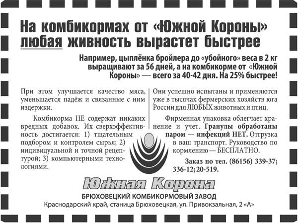 Печатная реклама, Денис Богомолов, БКЗ