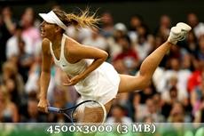 http://img-fotki.yandex.ru/get/9094/14186792.3b/0_d97d0_e2a2526f_orig.jpg