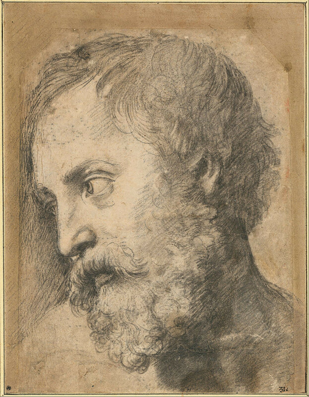 797px-Raphael_-_Head_of_An_Apostle_in_the_Transfiguration,_1519-1520_-_Google_Art_Project.jpg