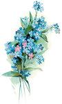 drawings-of-flowers-1.jpg