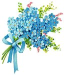 risunki-cvetov.jpg