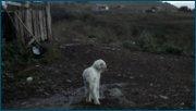 http//img-fotki.yandex.ru/get/909751/131084270.66/0_17682d_c850617b_orig.jpg