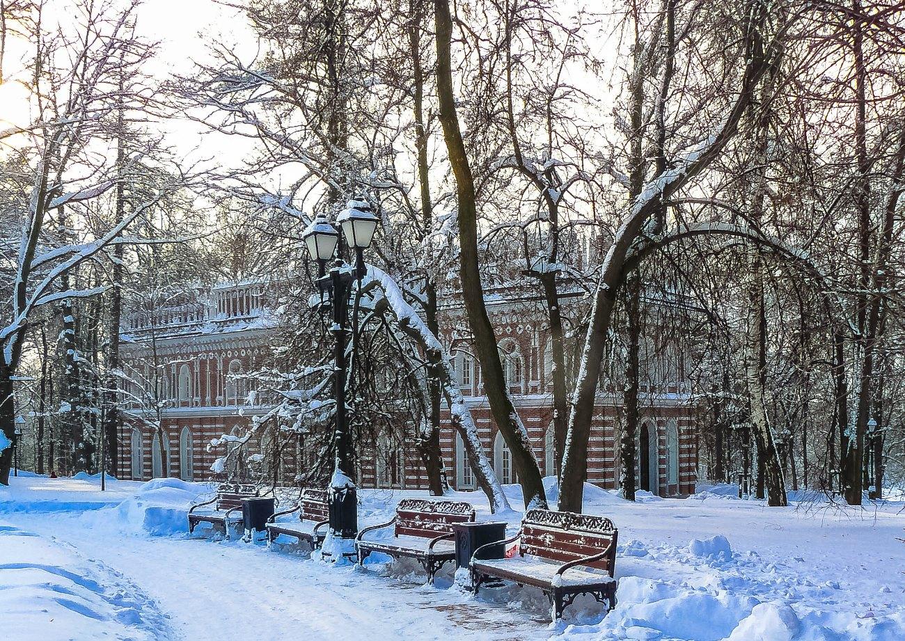 irina-fortuna-tsaritsino-winter 05.jpg