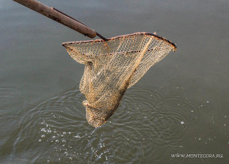 Вылов краба из водоема