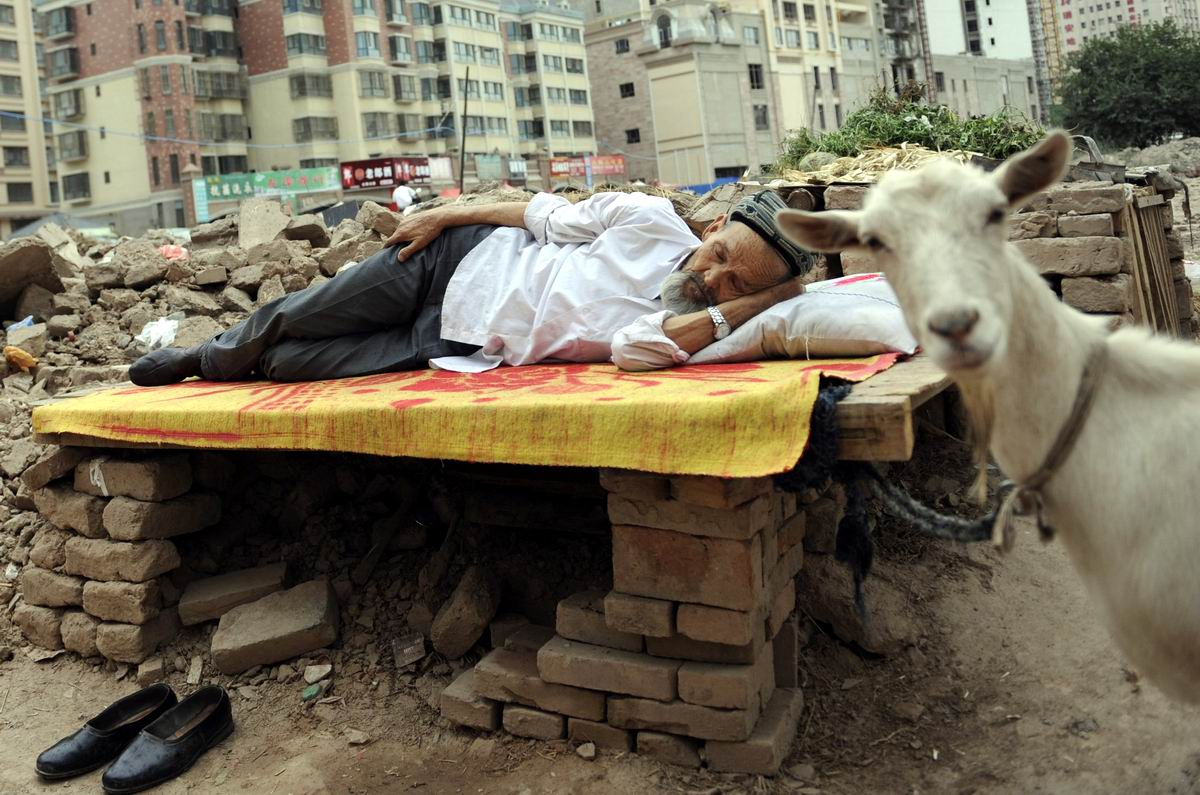 Устал - отдохни!  Уснувший уйгурский дедушка и сторожащая его коза