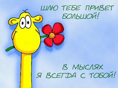 Открытки. Международный день приветствий. В мыслях я всегда с тобой открытки фото рисунки картинки поздравления