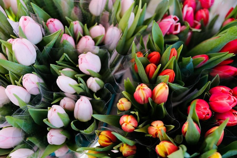 Перед женским днём вКалининградскую область привезли более 7 млн цветов