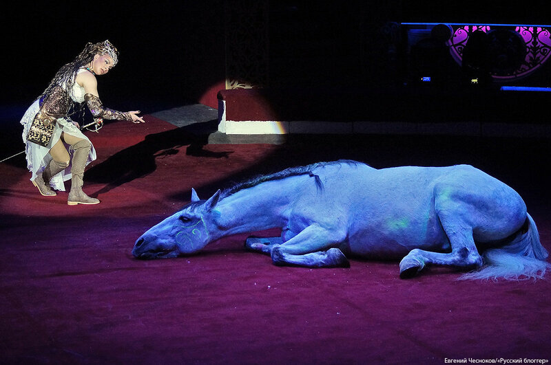 Цирк. Монте-Карло. 22.02.18.32. А.Стыкан-Федотова..jpg