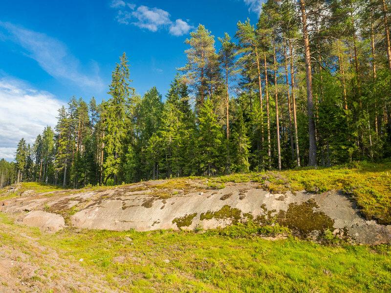 каменных лесов